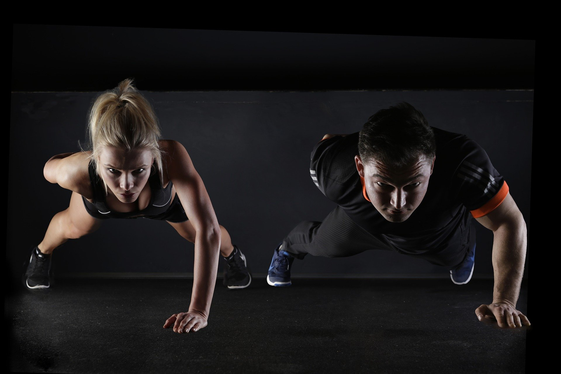 Muscle-pushup-protein