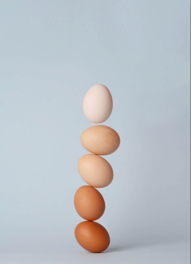 What are the different protein powders? - Eggs stacked in a line